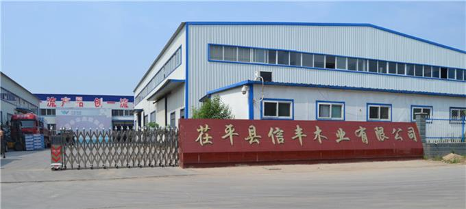 Xinfeng - Complete Production Lines