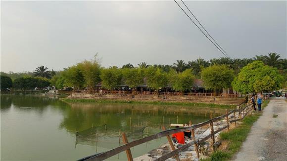 Fish Pond - Fresh Water